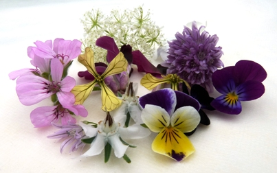 Edible-Flowers 2