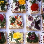 Edible Flowers, Botanical Cuisines, Ideas & Guide