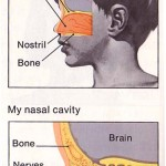 Benefits of Nose Breathing Exercise