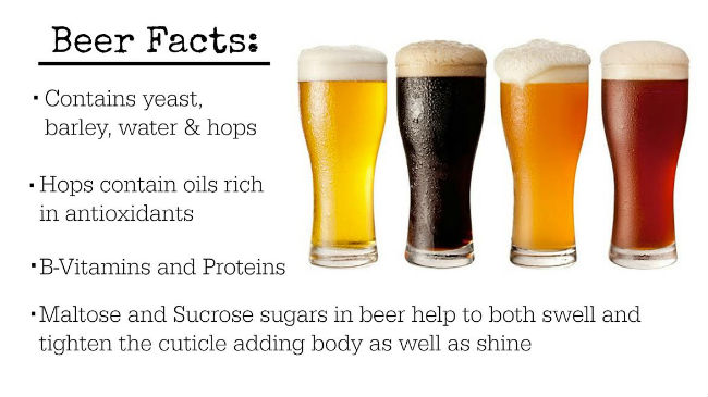 beer-facts-650x365