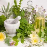 7 Healing Plants That You Can Grow on Your Own