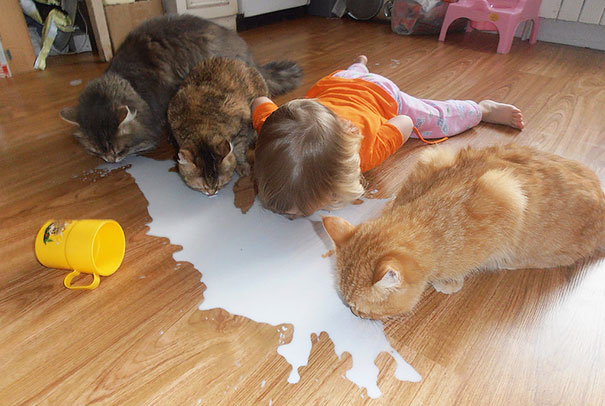 kids-with-cats-47__605