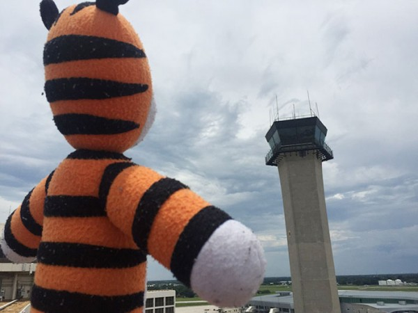 hobbes-stuffed-animal-lost-airport-tampa-international-owen-lake-1