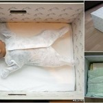 Every Newborn In Finland Sleeps In A Cardboard Box For The Most Brilliant Reason