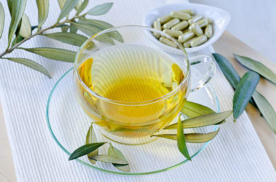 olive-leaf-tea-extract-opt