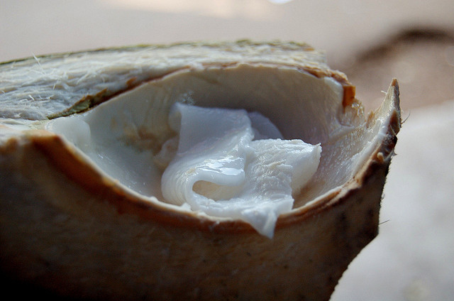 how to eat mature coconut meat