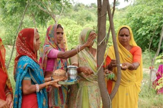 111-trees-planted-India-women-326x217