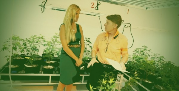 Women-CEO-Weed-1024x522