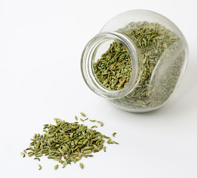 fennel-seeds1-opt