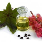 Castor Oil's Forgotten Benefits