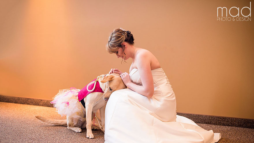 wedding-service-dog-tutu-dress-maddie-peschong-mad-photo-design-1