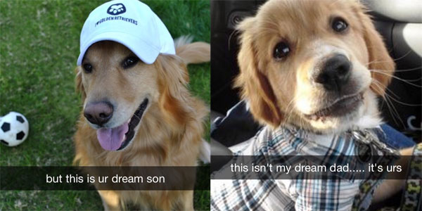 funny-snapchat-dog-dream