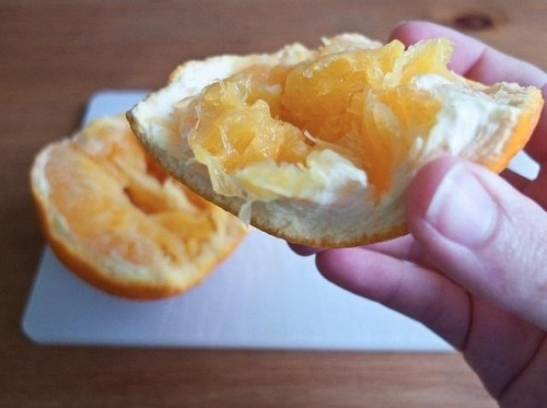 squeaky-clean-trick-eating-orange-without-getting-your-fingers-all-sticky.w654 (4)