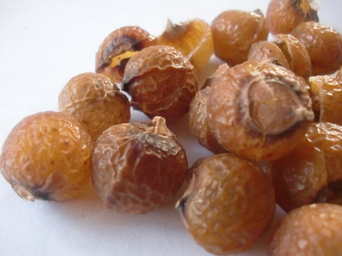 soap-nuts-wholesale