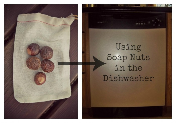 soapnuts-dishwasher-edited