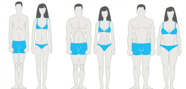 what-is-your-body-type-facebook-box