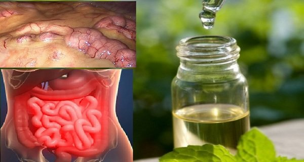 remove-all-toxins-from-the-body-in-3-days