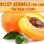 Apricot Kernels For Cancer