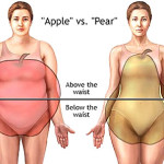 Things You Didn't Know About Body Fat