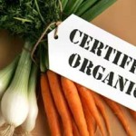 Scientists Prove Organic Food More Nutritionally Rich Than Conventional, GMO Crops