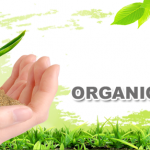 45% of Organic Fruits and Vegetables Contains Pesticide