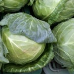 Cabbage – Natural Cure For Stomach Ulcer