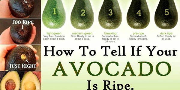 how-to-tell-if-your-avocado-is-ripe-n