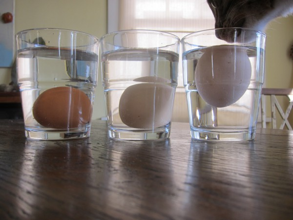 top-10-coolest-tricks-you-can-use-in-your-kitchen4