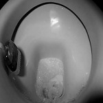 5 Things That Are Dirtier Than Your Toilet Seat