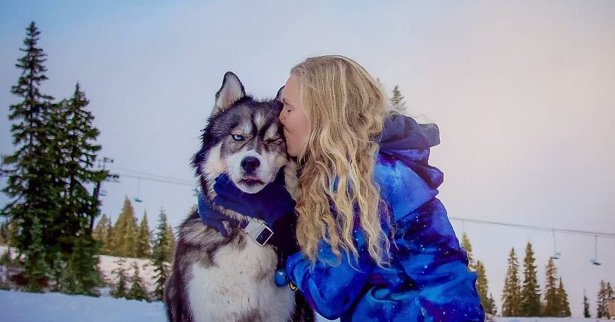 i-rescued-a-husky-and-later-he-saved-me-from-an-abusive-relationship-10__880