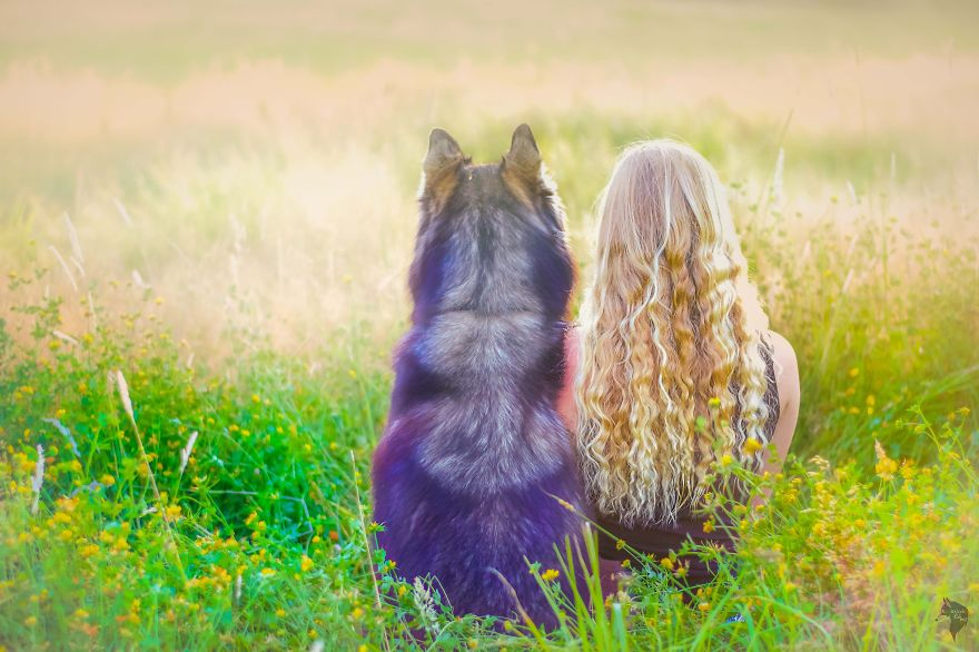 i-rescued-a-husky-and-later-he-saved-me-from-an-abusive-relationship-3__880 (1)
