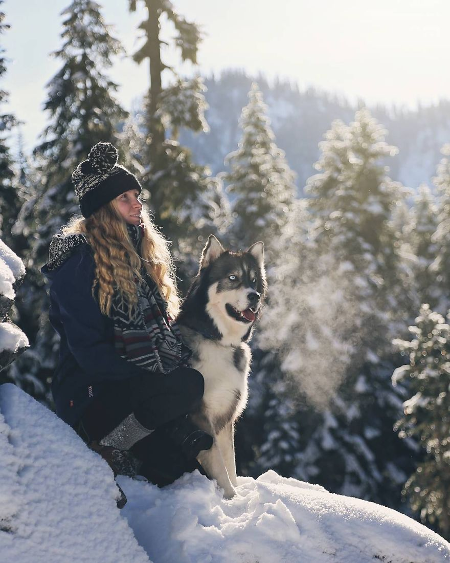 i-rescued-a-husky-and-later-he-saved-me-from-an-abusive-relationship-3__880