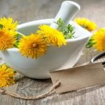 Dandelion Cures Cancer, Hepatitis, Liver, Kidneys, Stomach… Here's How To Prepare It