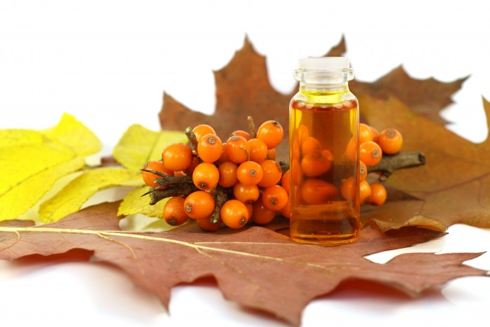 These are ripe orange berries of sea-buckthorn berries and the medical oil made of stones of sea-buckthorn berries. This oil possesses tremendous medical effect and is actively used in pharmacology. Berries ripen in the late autumn, therefore on the image there are yellow and red leaves. Selective focus.