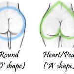 There Are Different Types of Butts in the World…. Do You Know Which One Are You?