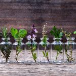 9 Essential Oils You Need In Your Life