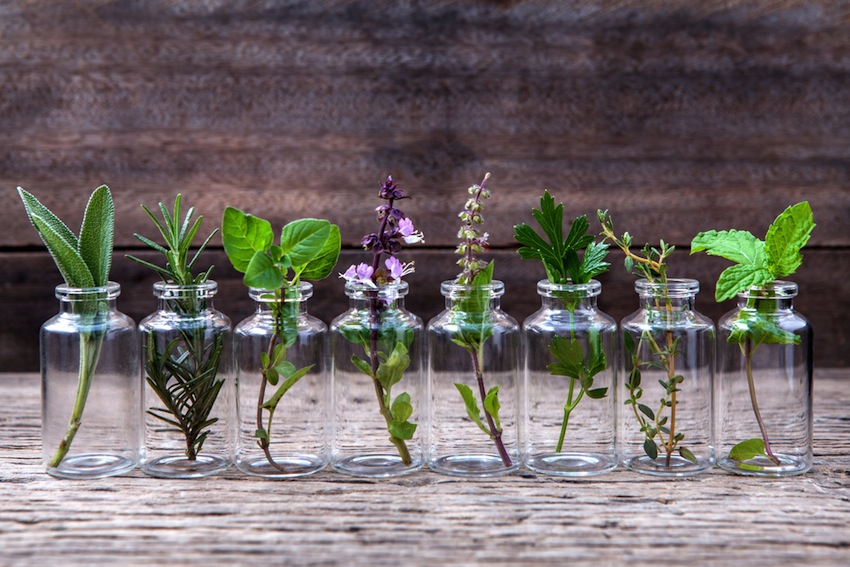 9-essential-oils-you-need