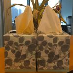 There's Something Very Important You Never Realized About Your Tissue Box