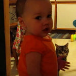 Father Captures His Baby And Cat's Adorable Morning Ritual