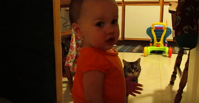 No One Believed Daddy When He Described His Baby And Cat's Morning Ritual. So He Caught THIS