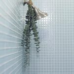 THIS IS WHAT HAPPENS TO YOUR BODY WHEN YOU HANG EUCALYPTUS IN YOUR SHOWER